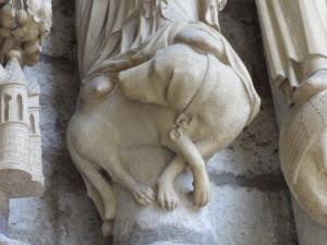 Notre Dame, Paryż, fot. K. Kijewski
