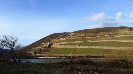 Widok z Bingen na dolinę Renu